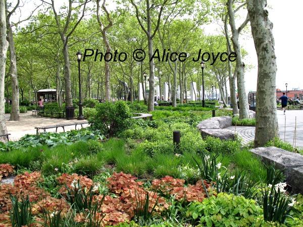 Battery Gardens, New York, Piet Oudolf Design « Alice\'s Garden ...