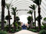 Calatrava Design - Umbracle Photo © Alice Joyce