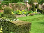 Mapperton Gardens, Lawn, Topiary Photo © Alice Joyce